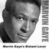 Marvin Gaye's Distant Lover