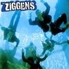 The Ziggens