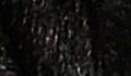 Ново * Емануела - Големите рога