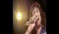 Ac/ Dc - In Hallifax With Bon Scott 1977