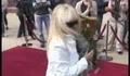 Lili Ivanova - Bulgarian Super Star.